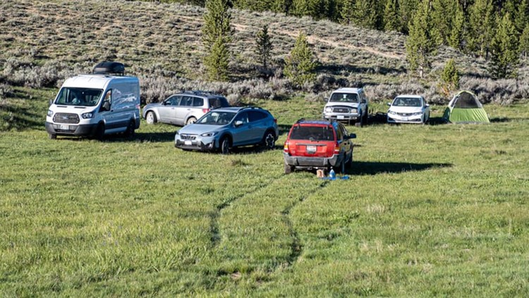 Where camping is permitted in Idaho's forests