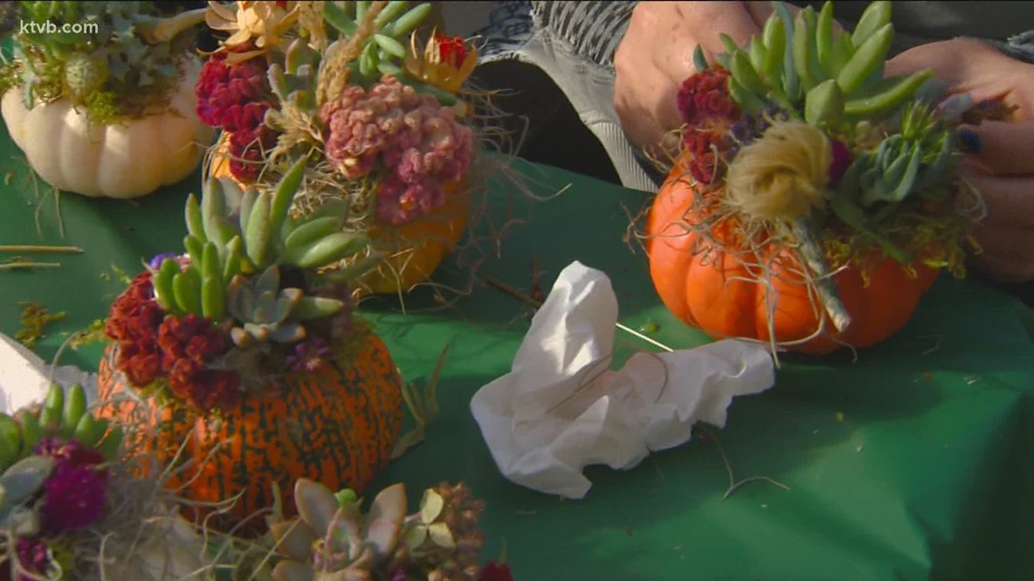 You Can Grow It: Decorating pumpkins with succulents