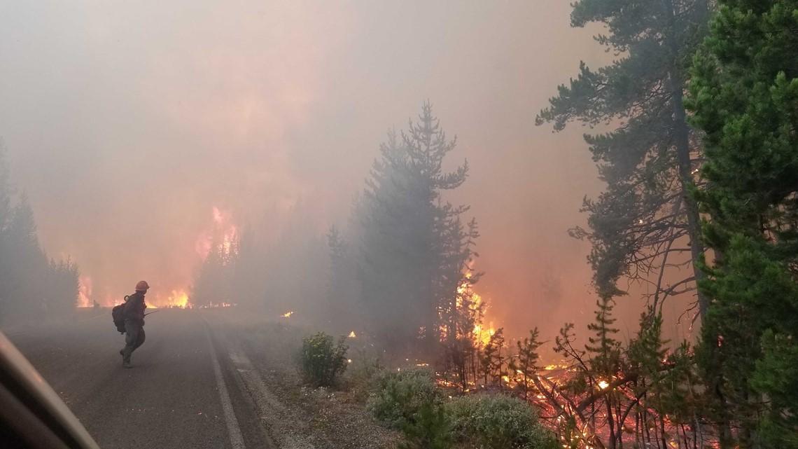 Idaho and Montana governors left out of wildfire response meeting   ktvb.com