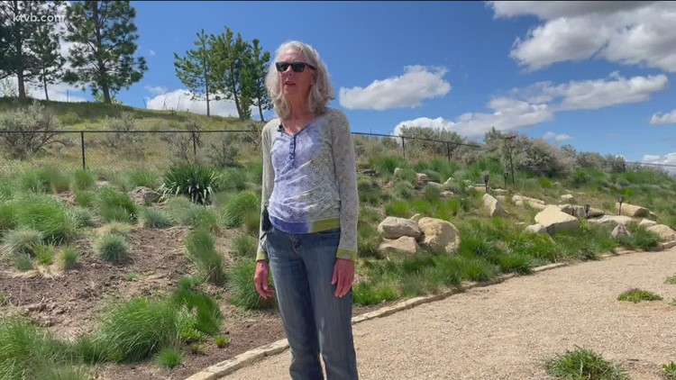 You Can Grow It: Creating a firewise landscape around your home