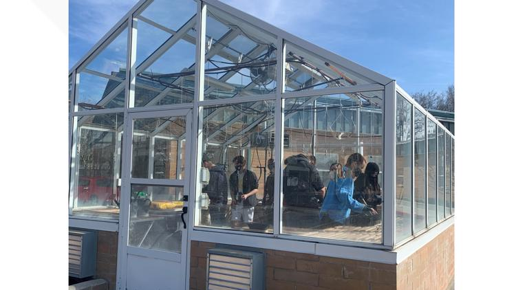 Eagle Academy teacher brings back greenhouse: 'I really see it as a good way to learn life skills'