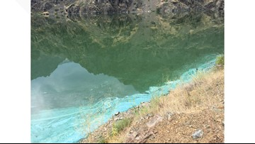 Cyanobacteria health advisory continues for Hells Canyon Reservoir