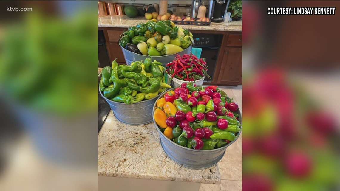You Can Grow It: More viewer photos from Idaho gardens
