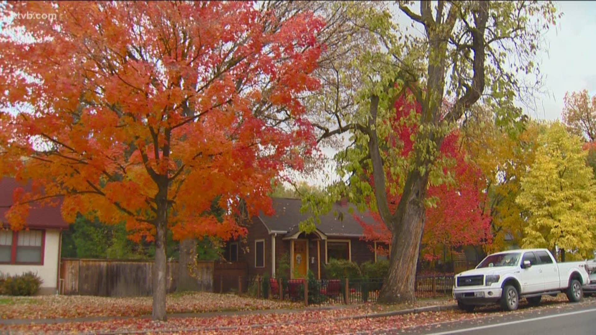 Is It Against The Law To Sweep Leaves Into The Street Ktvb Com
