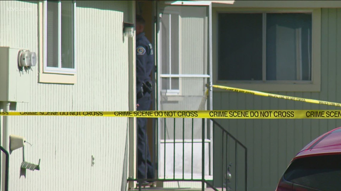 Man shot and killed after pointing gun at police in Garden City