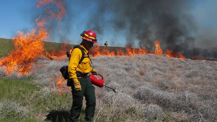 Environmentalists move toward lawsuit over fuel break plan