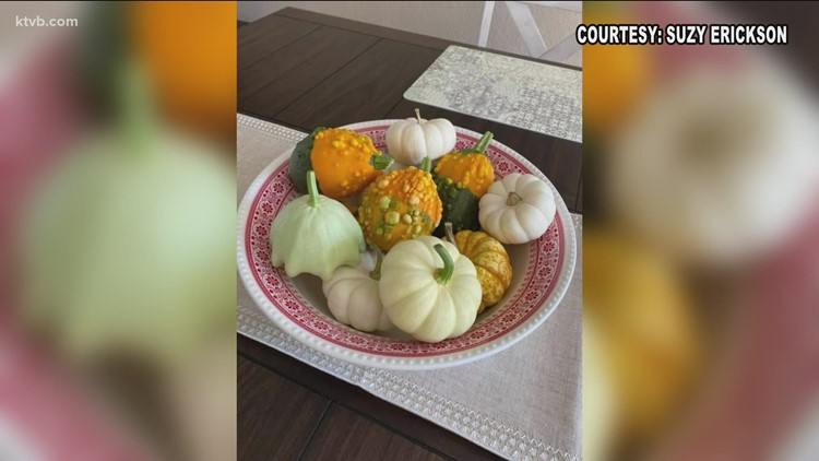 You Can Grow It: Our viewers share their garden harvests